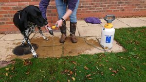 And after a muddy walk a little clean up with our mobile shower