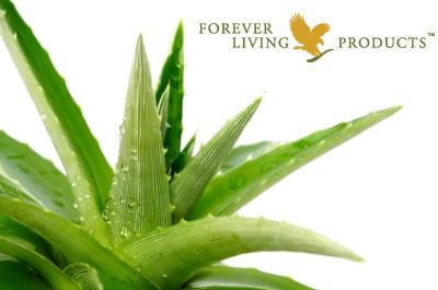 Forever Aloe
