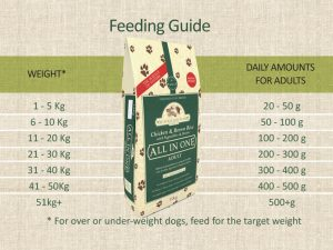 Adult-Chicken-Feeding-Guide